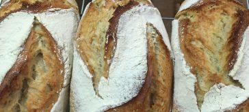 Receta de Pan de cerveza y miel de La Tahona de Nijar